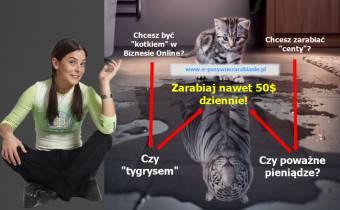 1 chcesz byc kotkiem czy tygrysem.png
