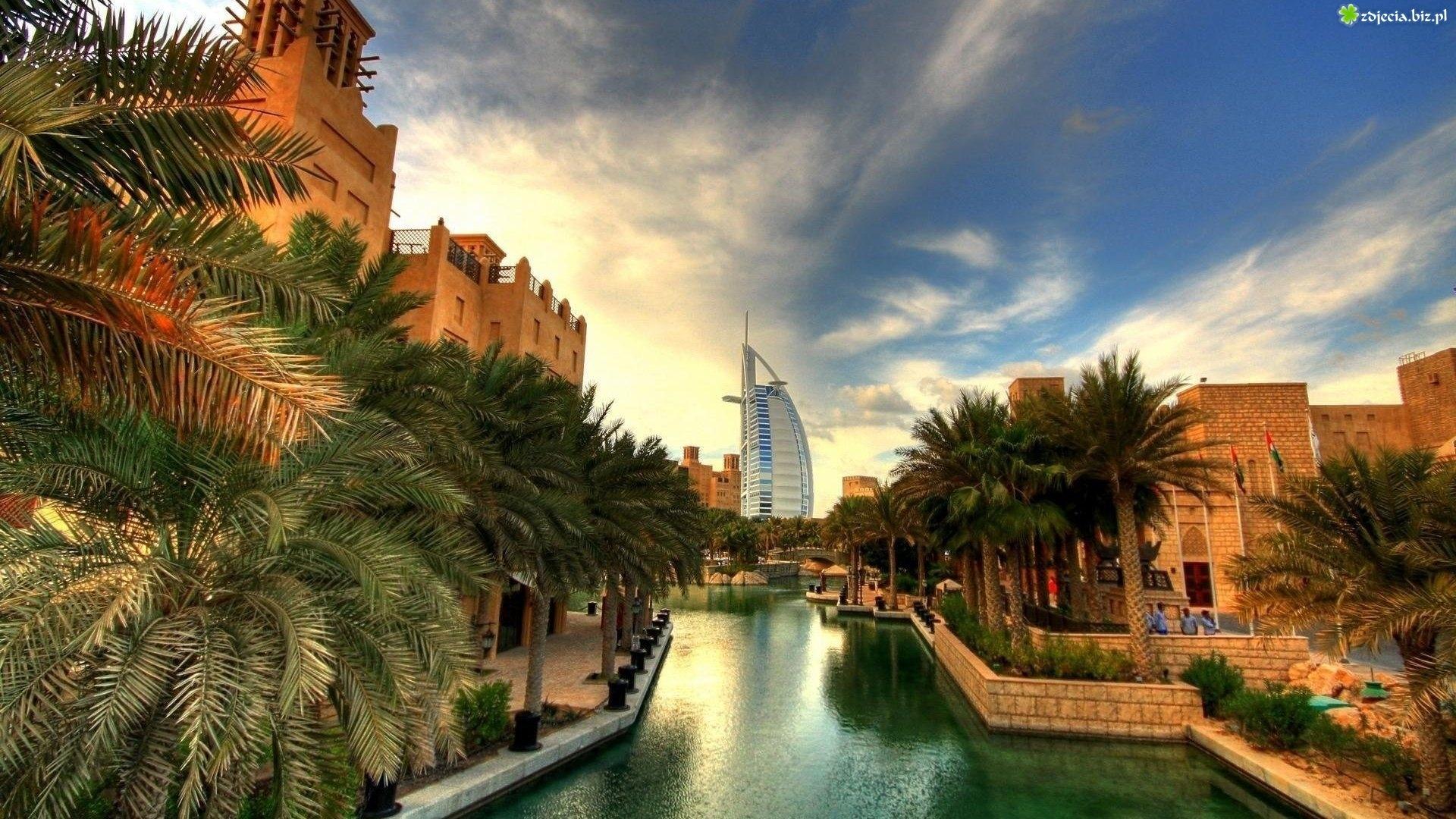 dubaj-hotel-palmy